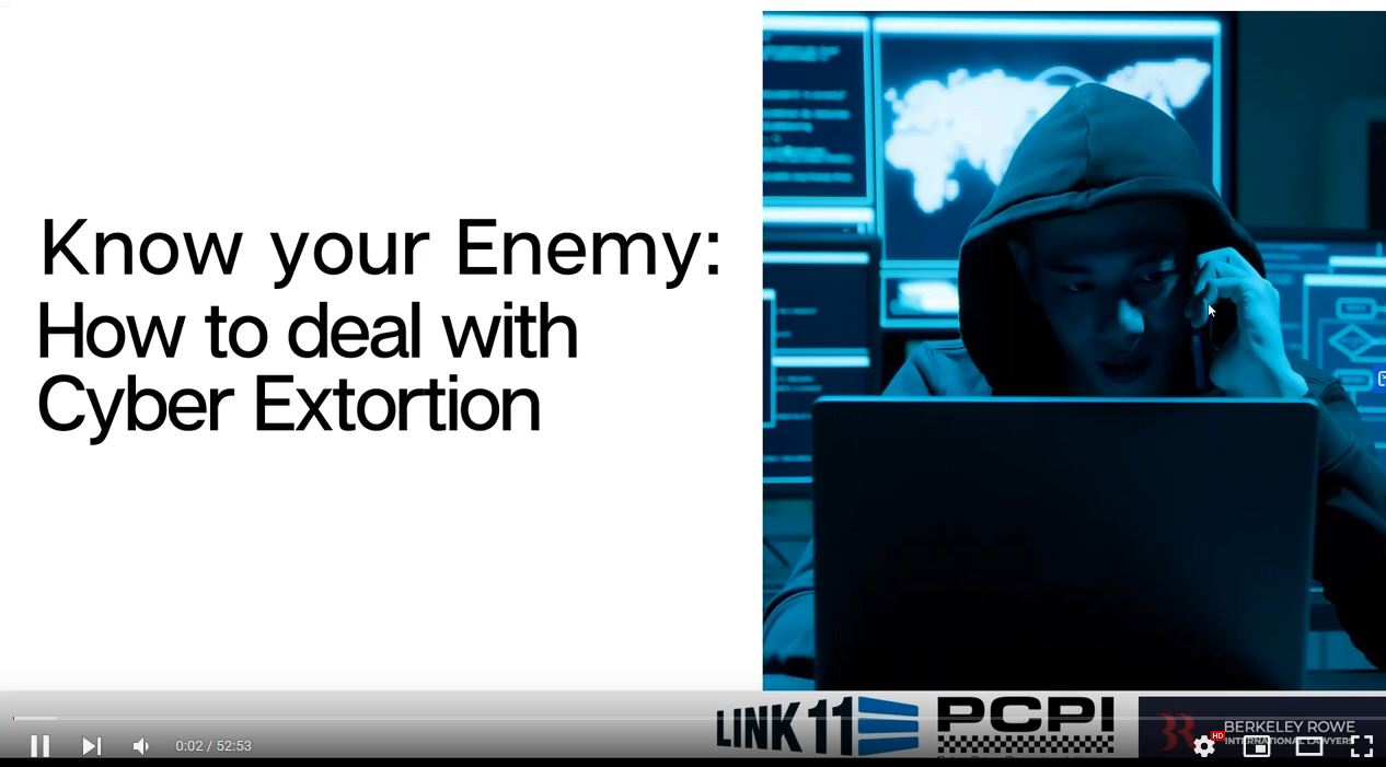 Know your Enemy: How to Deal with Cyber Extortion